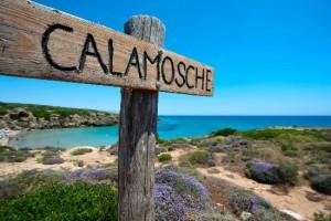 La baia di Calamosche
